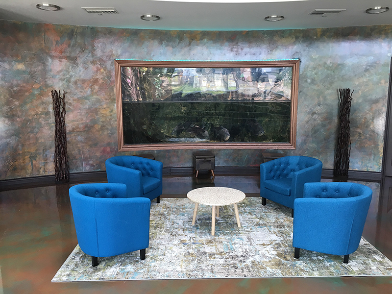 Fish tank in the waiting room of Individual Matters in Grand Junction, Colorado